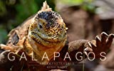 GALAPAGOS: 奇跡の孤島ガラパゴスの生物たち