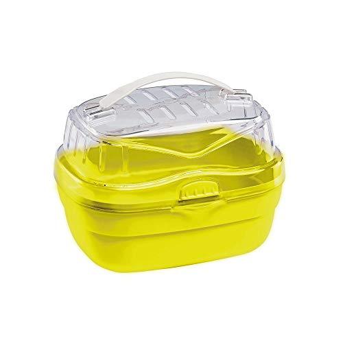 Ferplast Trasportino per Piccoli Roditori Aladino Small, Plastica Resistente, Fondo Colorato con Coperchio Trasparente, Griglie di Ventilazione, Comodo Manico, Chiusura Sicura, 20 X 16 X 13,5 cm Verde