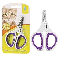 best interactive cat toy