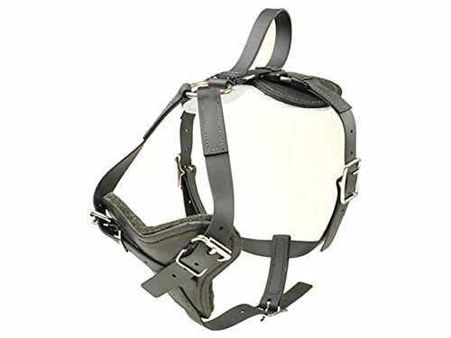 REDLINE K-9 BioThane All Weather Dog Harness with Quick Release (Large)