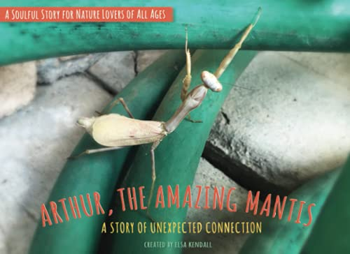 Arthur, The Amazing Mantis: A Story of Unexpected Connection (Stories from the Natural World)