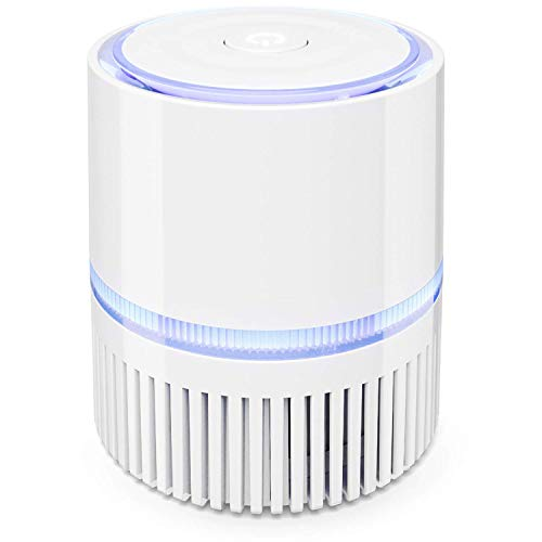 Yangangjin draagbare luchtreiniger met HEPA-filter, Clean Air huis-luchtreiniger, verwijderaar voor pm2,5, allergieën, bacteriën en slechte tabaksgeuren, wit