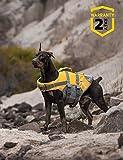 Rettungsweste für Hunde, Rettungsweste, Schwimmweste für Haustiere, größenverstellbar,...