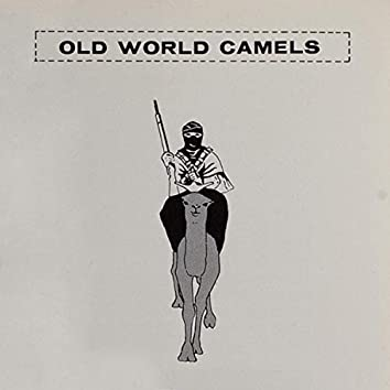 Old World Camels