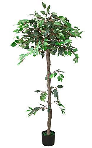 Decovego Ficus Benjamin Birkenfeige Kunstpflanze Kunstbaum Künstliche Pflanze mit Echtholz 160cm