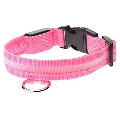 NEO+ Verbessern Sie die Hunde Sichtbarkeit und Sicherheit USB Wiederaufladbare LED Hund Sicherheit Kragen - Ultra Helle LED - Keine Batterien - Großer Spaß - Ihr Hund Wird mehr sichtbar & sicher