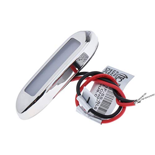 SDENSHI Lámpara LED de 12 V azul para placa de matrícula, para coche, barco, remolque, resistente al agua