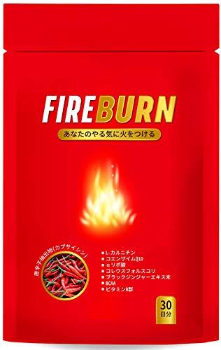 【FIRE BURN】 L-カルニチン コエンザイムQ10 サプリ 燃焼系 ダイエット 厳選素材 30日分