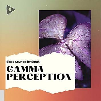 Gamma Perception