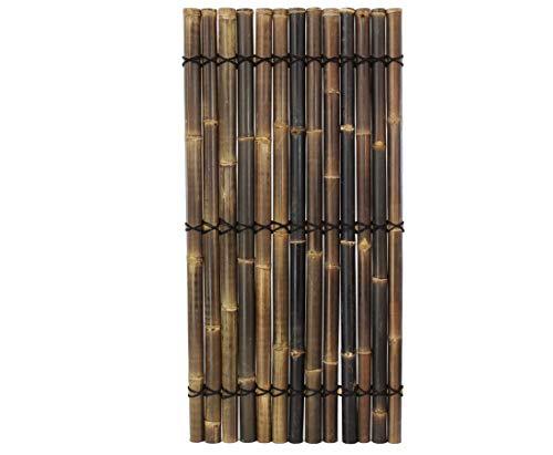 Bambuszaun Apas3 schwarz- braun 180x90cm aus ganzen Bambusrohren mit 6-8cm - Sichtschutzzaun aus dunklen Bambus