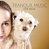 Tranquil Music for Dogs - Calm Down Your Animal Companion, Relaxing Music for Dogs, Soothing Nature Sounds for Puppies & Cats