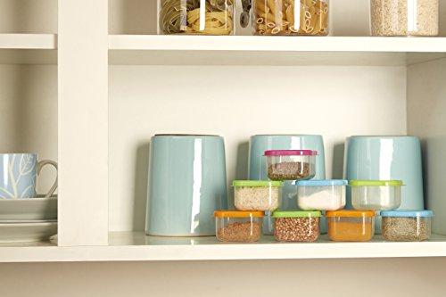 Premier Housewares Mini Storage Containers - Set of 8, Multi-Coloured