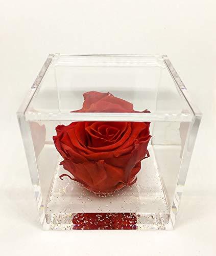 Cubo Rosa Stabilizzata Rossa 8x8x8 -Passionefiori.it il Cubo con rosa è una vera e propria Rosa che dura 5 anni - fiore conosciuto anche come Rosa eterna Rossa, non ha bisogno di acqua ne luce.