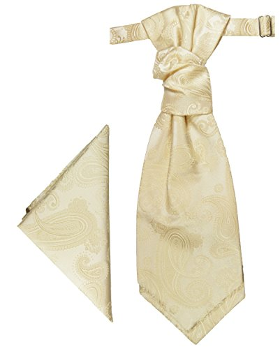 Paul Malone Plastron Set creme 2tlg Plastron mit Einstecktuch - Hochzeit Krawatte
