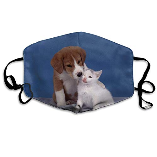 Polyester Anti-Dust Mond Masker - Hond Puppy Leuke Huisdier Logo Gewassen Herbruikbare Mond-Muffel - Mode Gedrukte Gezichtsmaskers voor Outdoor Fietsen Eén maat Hond Puppy Kat Kitten