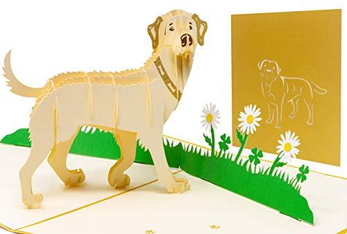 LIMAH® Pop Up Hundekarte, Geburtstagskarte, Glückwunschkarte, Freundschaftskarte, Geschenkkarte, Überraschungskarte mit einem großen Hund (Labrador) und einer grünen 3D Wiese (Beige)