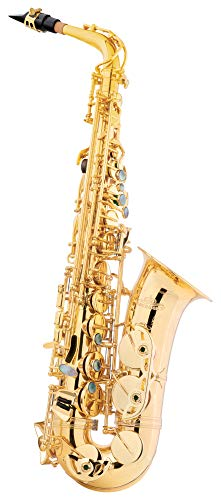 Lechgold LTS-20L Tenor-Saxophon - aus lackiertem Messing - Kräftiger, runder Klang - Inklusive ESM Mundstück aus deutscher Fertigung und Leichtkoffer mit Rucksack-Garnitur - lackiert