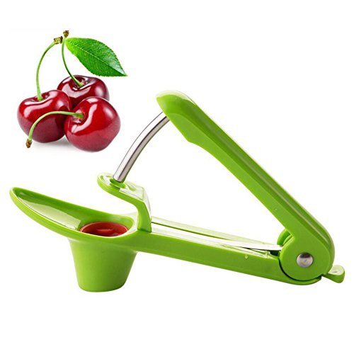 Cerise et Olive Pitter Outil, Skitic Handheld Cherry Remover Corer Résistant en Acier Inoxydable et ABS Extracteur de Cuisine Tool - Vert