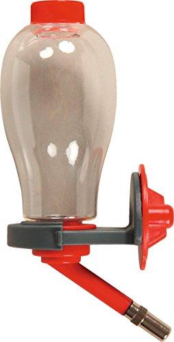 Autre Marque Biberon avec Remplissage Facile Rouge Cerise 250 ML (Remplissage par Le Dessus) multicolore 206375