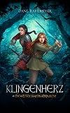 Klingenherz (Die Ritter von Danmor, Band 1)