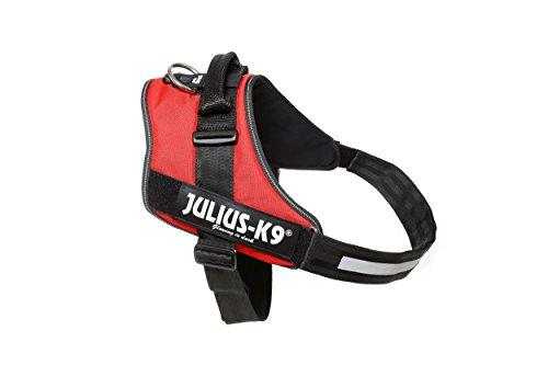 Julius-K9, 16IDC-R-4, IDC-Powergeschirr, Hundegeschirr, Größe: 4, rot