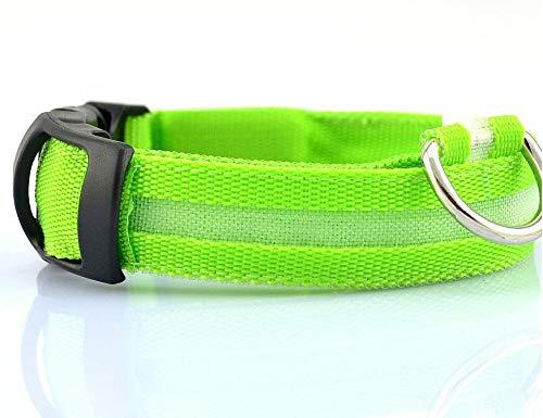 xingguang Correa LED para perro de mascotas, seguridad nocturna intermitente que brilla en la oscuridad, collares fluorescentes luminosos para perros (color: verde, tamaño: M)