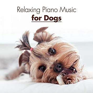 Relaxing Piano Music for Dogs – Sound Therapy, Deep Relaxation, Anti Anxiety, Calmness, Happy Dog