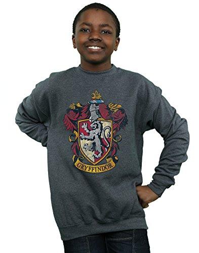 Harry Potter Jungen Gryffindor Distressed Crest Sweatshirt 12-13 Years Dunkle Heather