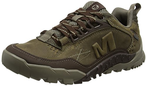 Merrell Annex Trak Gtx, Herren Low-top, Beige (Cloudy), 44.5 EU (10 UK)