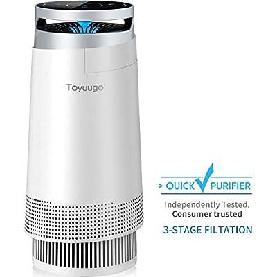 Brilliant Cheap Toyuugo Air Purifier True Hepa Air Cleaner With Bralicious Painted Fabric Chair Ideas Braliciousco