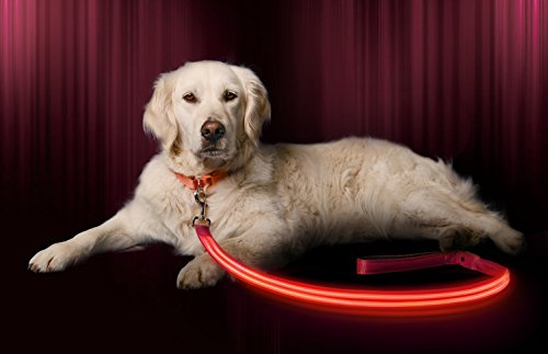 Illumiseen LED Dog Leash - USB Rechargeable - Your Dog Will Be More Visible & Safe - 6 Colors (Red, Blue, Green, Pink, Orange & Yellow) - Perfect to Use with Our Matching Collar (6 Feet, Pink)
