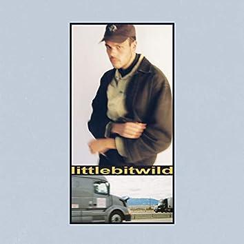 littlebitwild (feat. Mallrat)