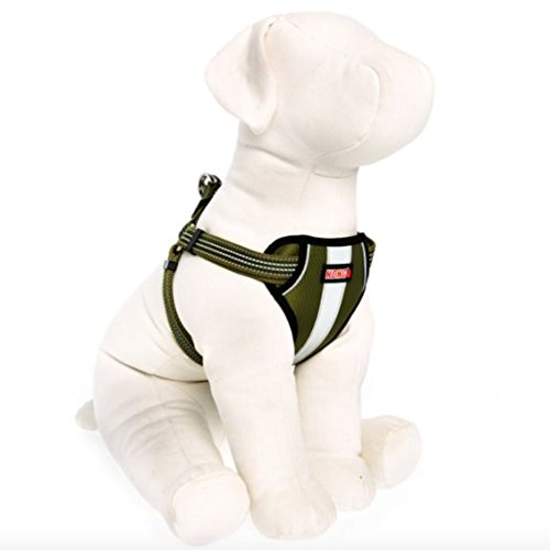 KONG Comfort Padded Reflective Chest Plate Dog Harness Offered by Barker Brands Inc. (Large, Green)