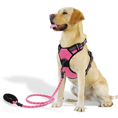 Raining Pet No Pull Pink Dog Harness Dogs Leash Set, Reflective Dog Harness for Large, Medium,Extra Large Dog Breeds,Pink