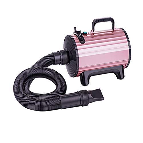 ZCY Huisdier hond föhn blaster blaster blazer droger 2300W blaasmachine gouden retro haar hoog vermogen roze