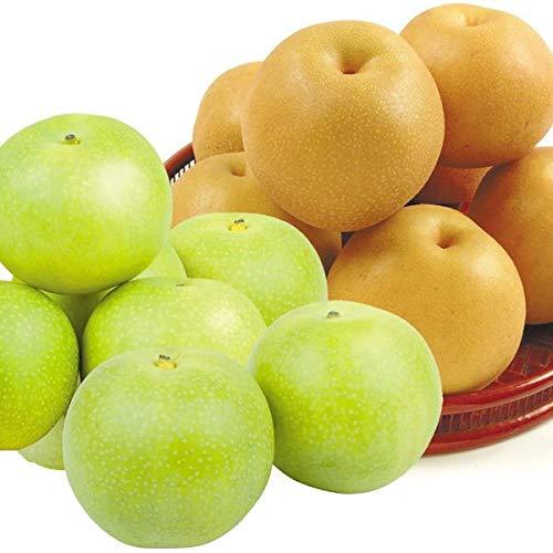 梨 大人気 赤梨・青梨 食比べセット 9kg (和歌山産:豊水梨4kg・鳥取産:二十世紀梨5kg)国華園