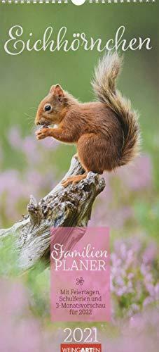 Eichhörnchen Familienplaner Kalender 2021