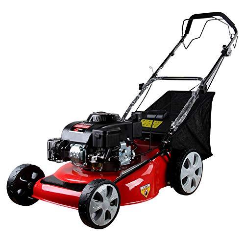WG Benzine-grasmaaier, zelfrijdende 6,0 pk 20 inch maaier, viertakt-multifunctionele grasmaaier, schoolpark speelplaats