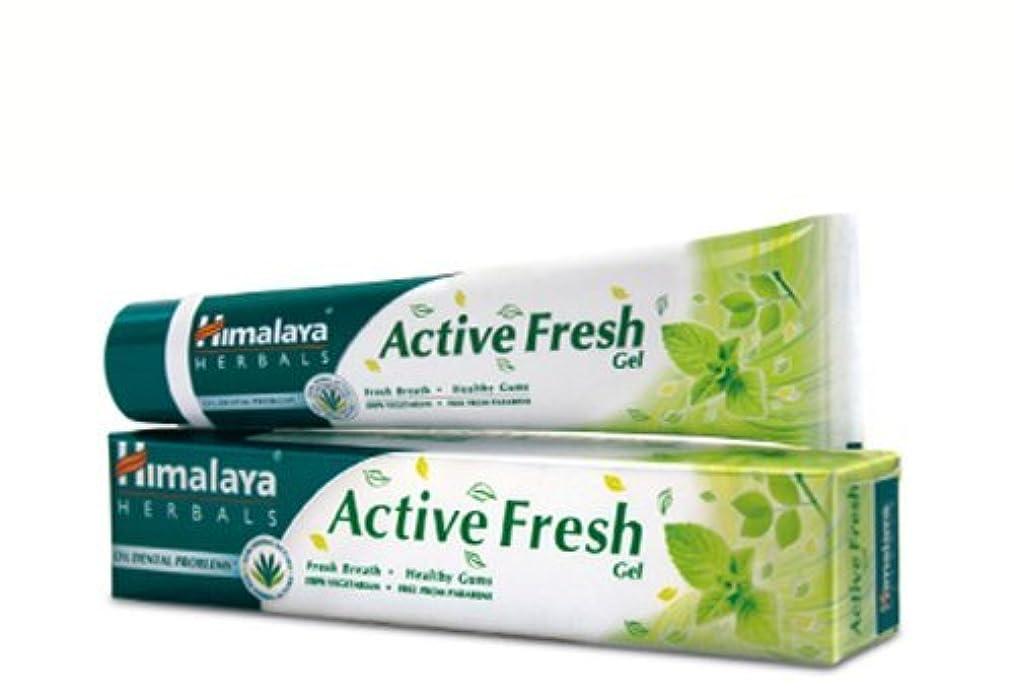 交換透ける列車ヒマラヤ トゥースペイスト アクティブ フレッシュ(歯磨き粉)80g Himalaya Active Fresh Toothpaste