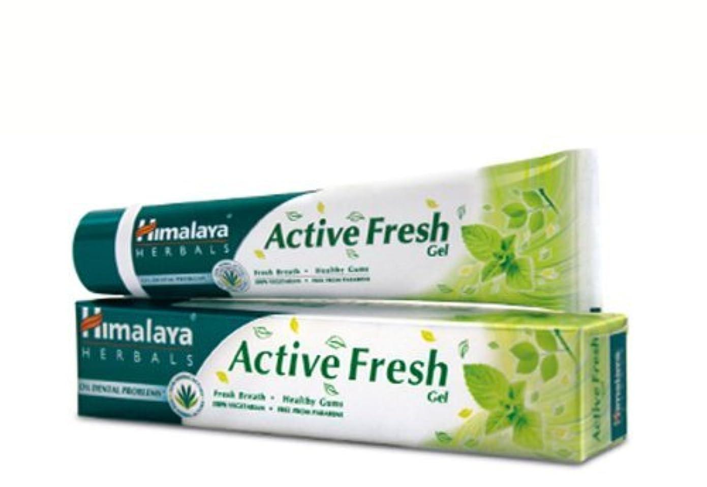 銀行費用天才ヒマラヤ トゥースペイスト アクティブ フレッシュ(歯磨き粉)80g×4本 Himalaya Active Fresh Toothpaste