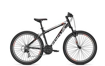 Focus Raven Rookie Mountain Bike 26 RH 55 cm black mate: Amazon.es ...