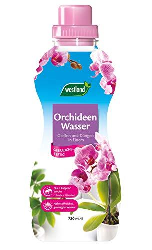 Westland® Orchideen Wasser, 720 ml