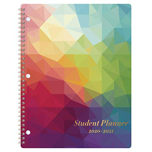 Student Planner 2020-2021 - School Planner with Stickers, July 2020-June 2021, 8.4' x 10.8', Academic Monthly & Weekly Planner/Agenda, Thick Paper + Holidays + 3-Hole Punched + Twin-Wire - Colorful