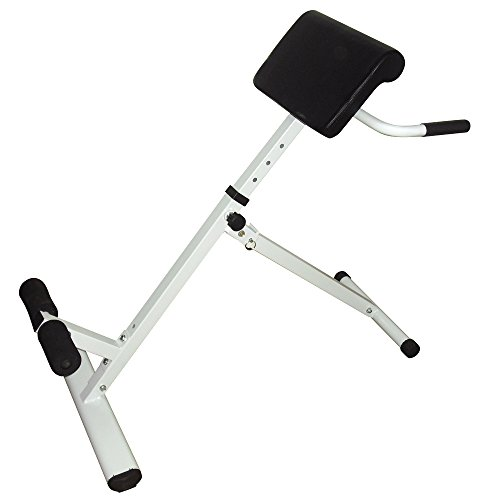 Roman Chair,Hyperextension Bench Adjustable 45 Degree AB Back Abdominal Exercise Machine
