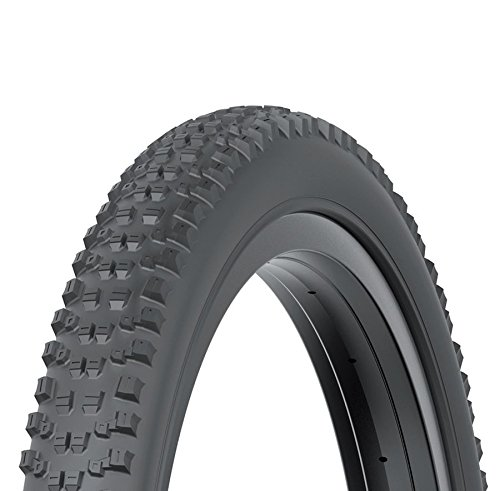 Kenda - Neumático Nevegal 2 E-Bike 29 x 2.60 DTC/EMC 60 TPI (MTB 29)