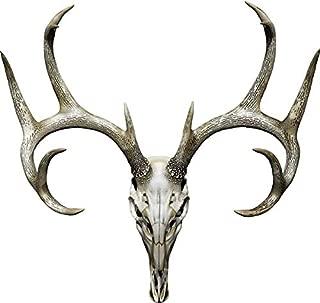 Best deer skull decal Reviews
