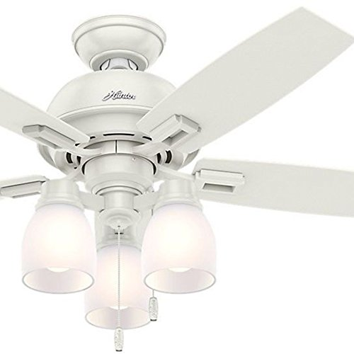 Hunter Fan 44 inch Fresh White Ceiling Fan with Light and LED bulbs (Renewed)
