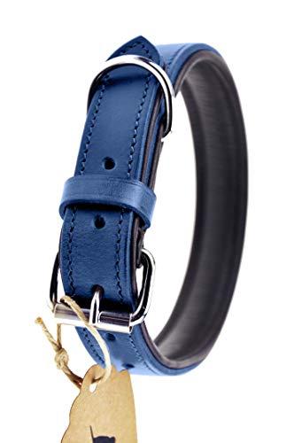 Schnüffelfreunde Lederhalsband Hund (M - 28-36cm, Blau)
