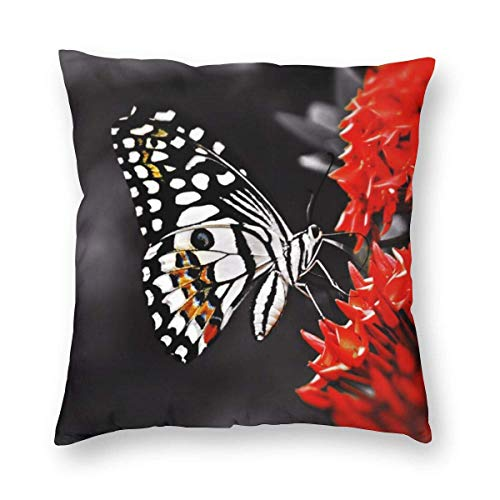 Harla Butterfly On Red Flowers Velvet Soft Decorative Square Throw Pillow Case Cushion Cover Pillowcase for Livingroom Sofa Bedroom with Invisible Zipper 20x20 Inches