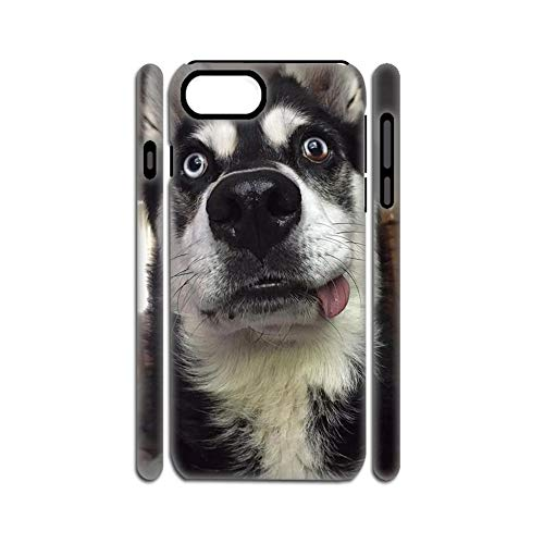 Print Siberian Husky 4 Protection Phone Cases Plastic Compatible iPhone 7Plus 8Plus 5.5Inch For Kid Choose Design 136-4